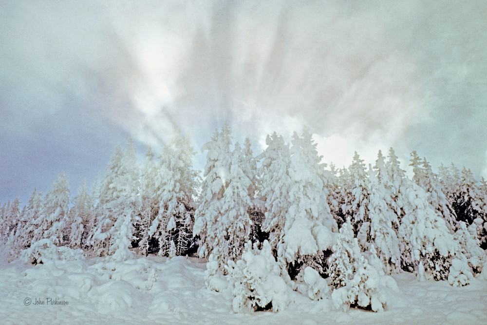 Yellowstone Park in winter