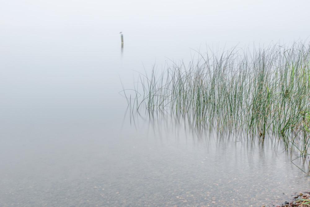 Morning fog Leech lake.