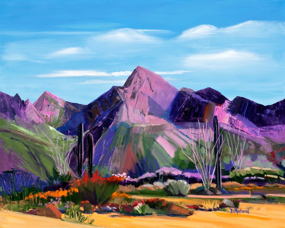 Pink Ocotillo | Southwest Art Gallery Tucson | Madaras