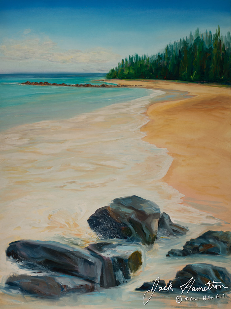 "#1342 ""Kanaha Beach Morning"""