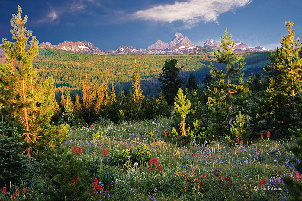 Teton Meadow, the west slope of the Teton peaks, Idaho