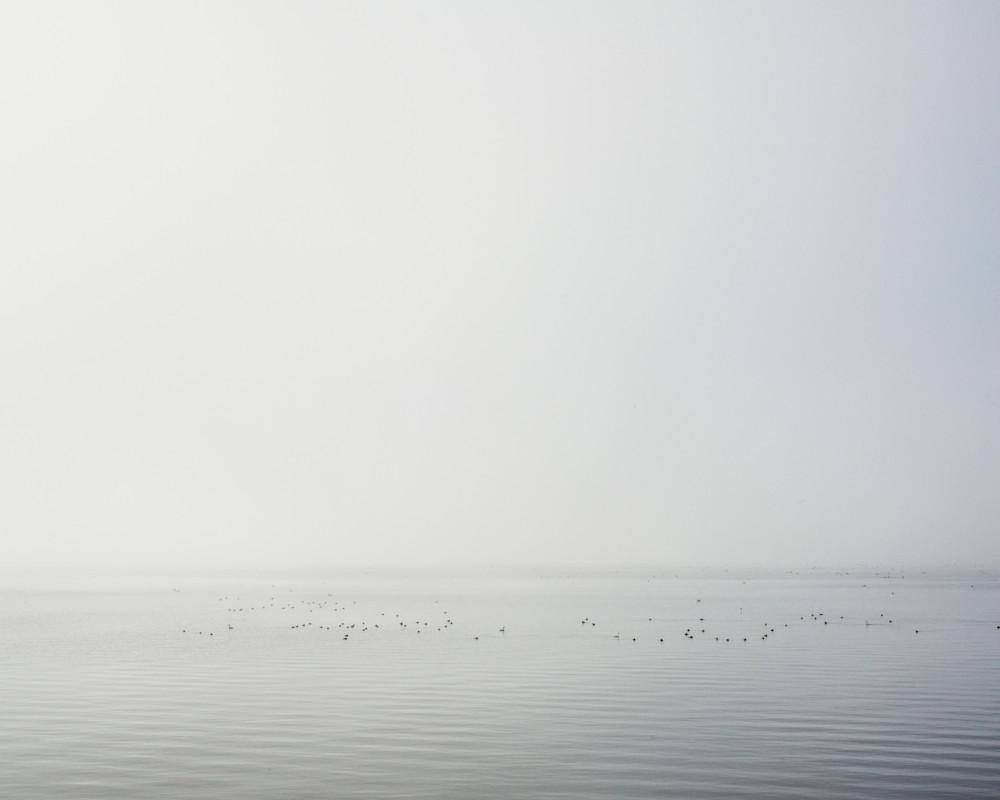 Clear Lake Fog