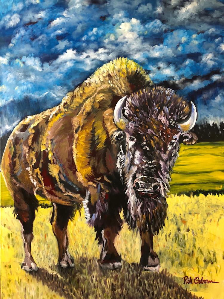 Bison   Fine Art Painting Print by Rick Osborn Artist