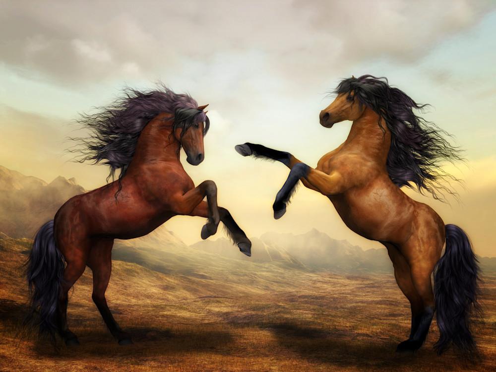 horses-2904536