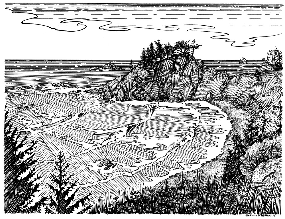 Wild Goat Cove Pen and Ink by Spencer Reynolds