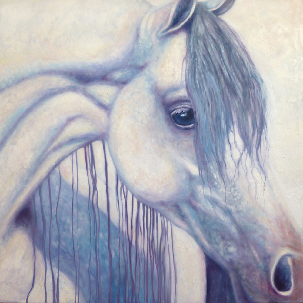 Print of White Arabian Horse portait