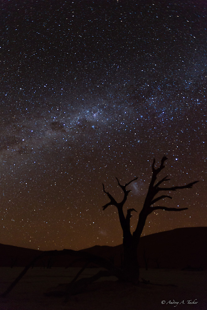 Milky Way Desert Fine Art Photograph