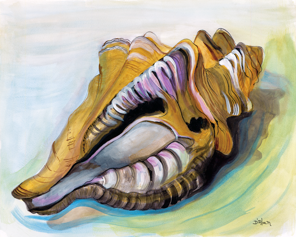 Conch Shell in the Nude