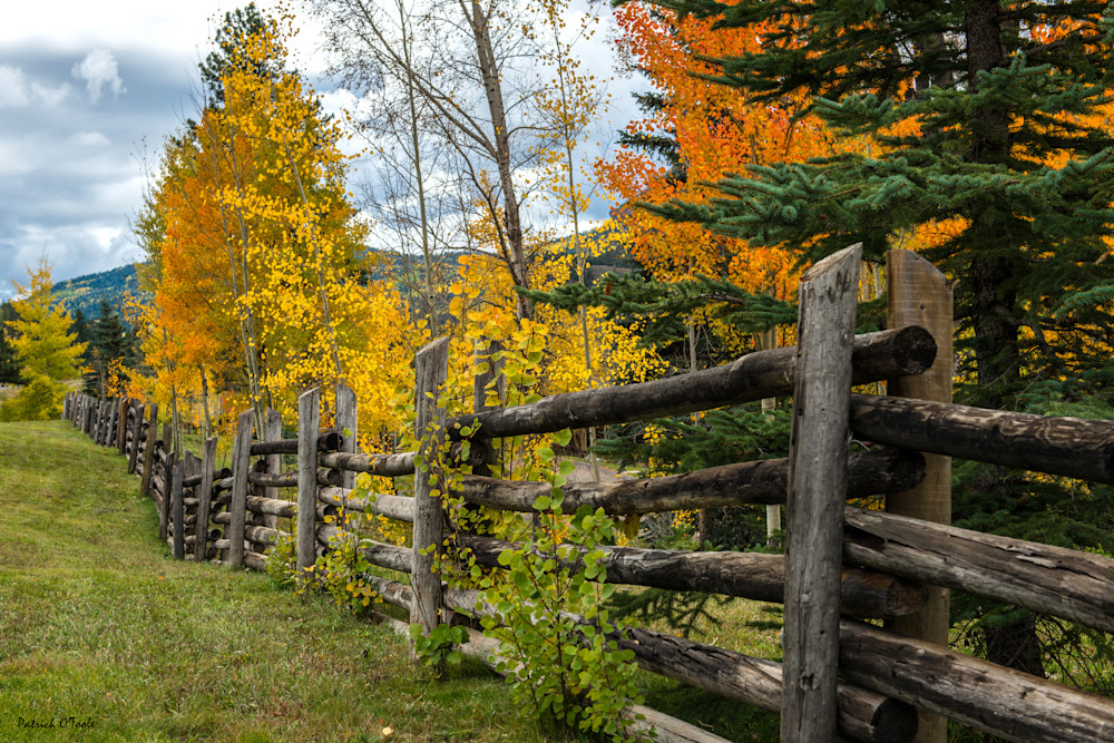 Fence In Autumn Photography Art | Patrick O'Toole Photography, LLC