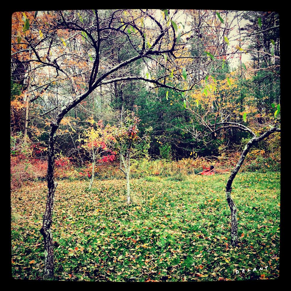 Hornbine Fall Instagram Print