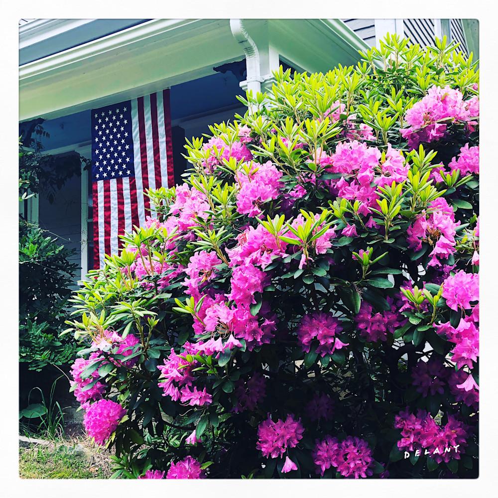 Spring Rhody Celebration Instagram