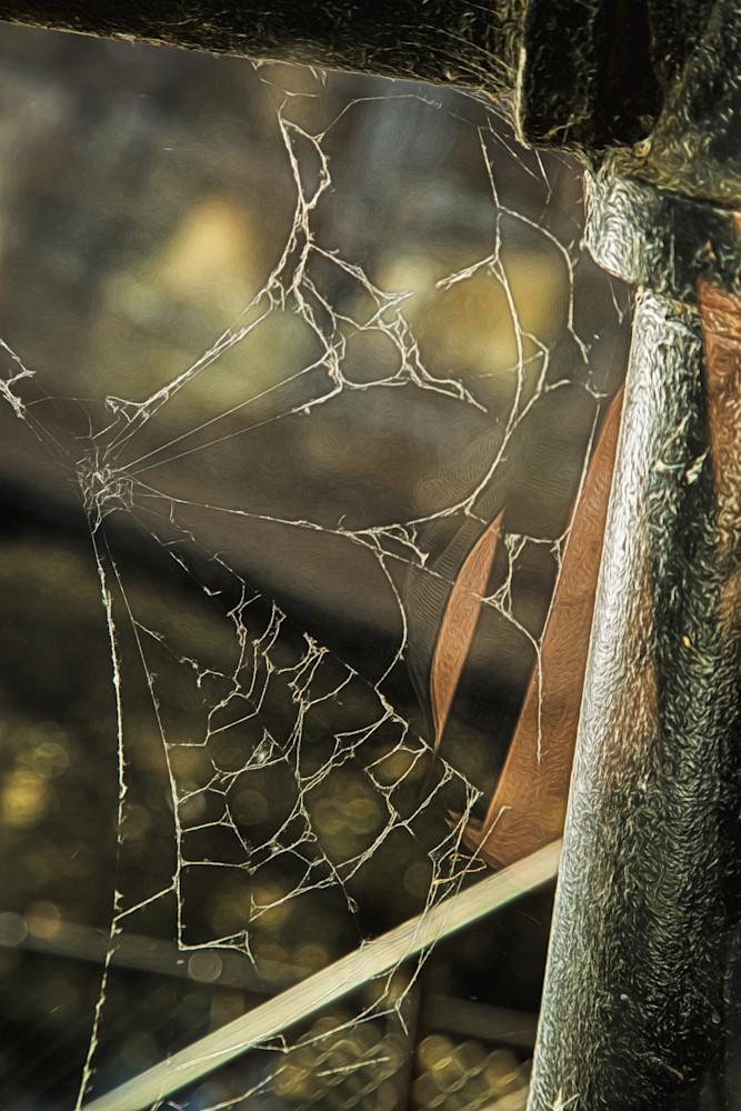 What A Web I Weave Photography Art | Peter J Schnabel Photography LLC