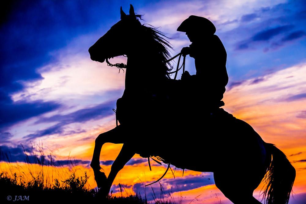 0021 Athletic horse