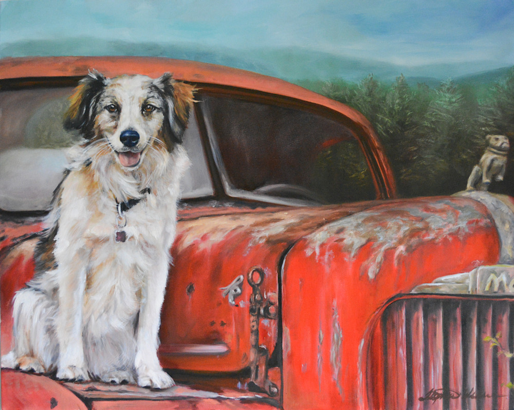 Australian Shepherd on a Mack Truck