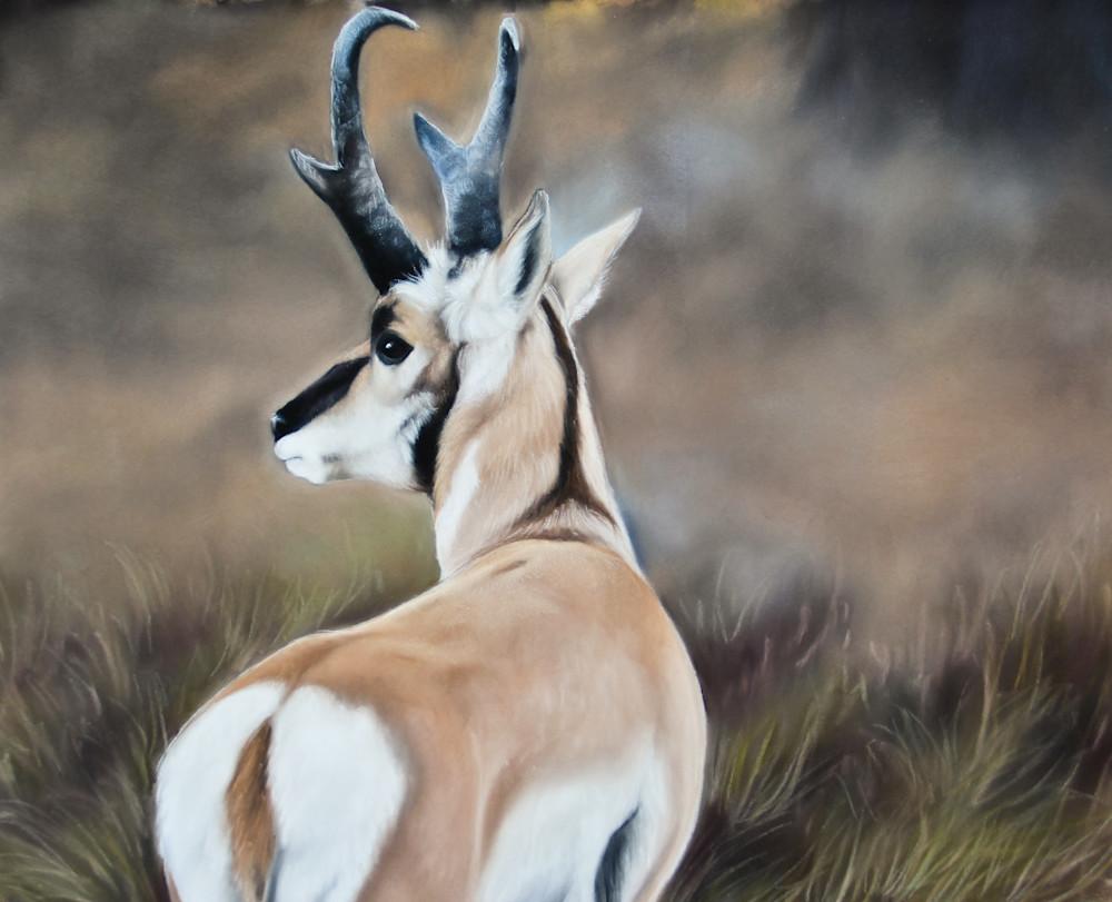 Swift As Shadows Art | Lauren Herr Fine Art