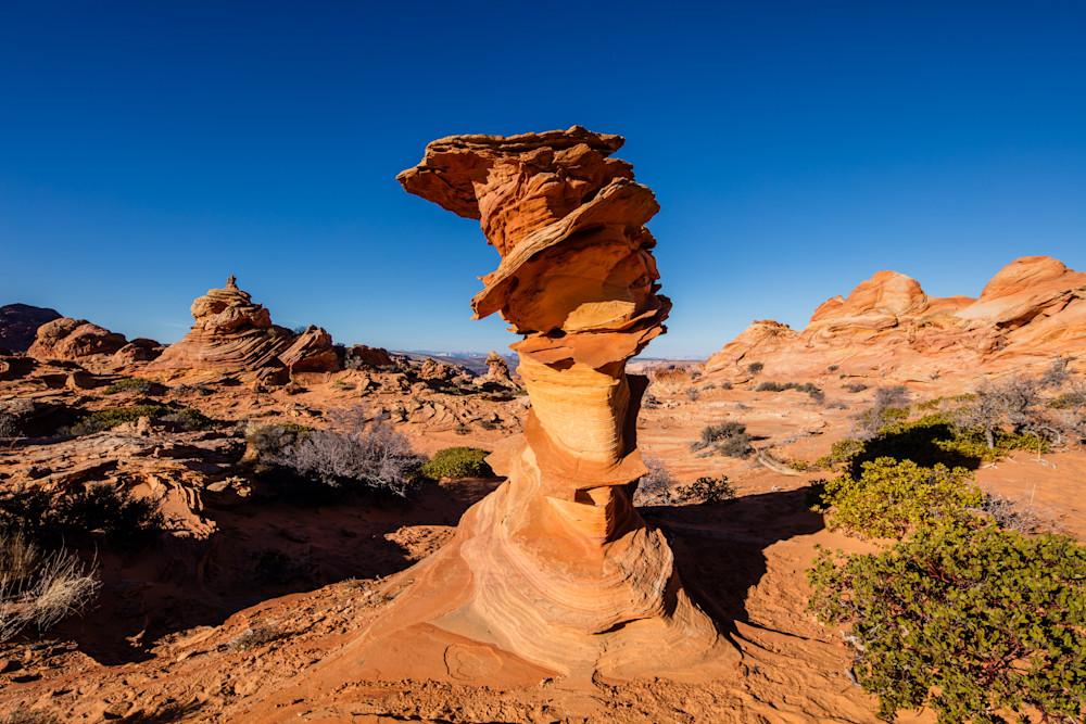 Coyote Buttes Statue Utah