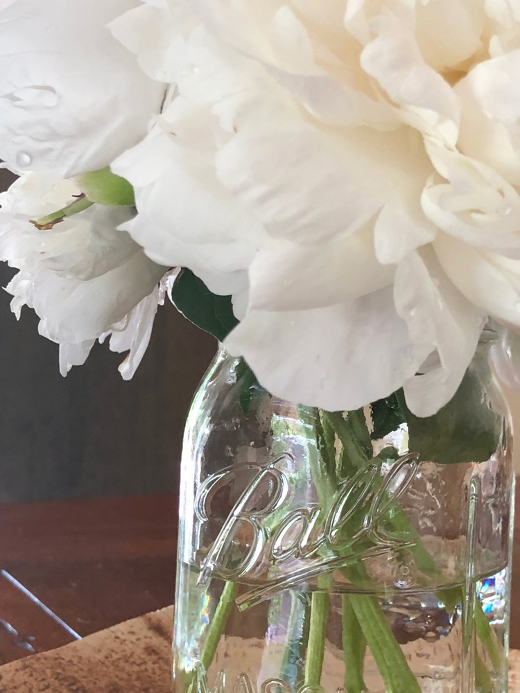 White Peonies: Jar of Blooms