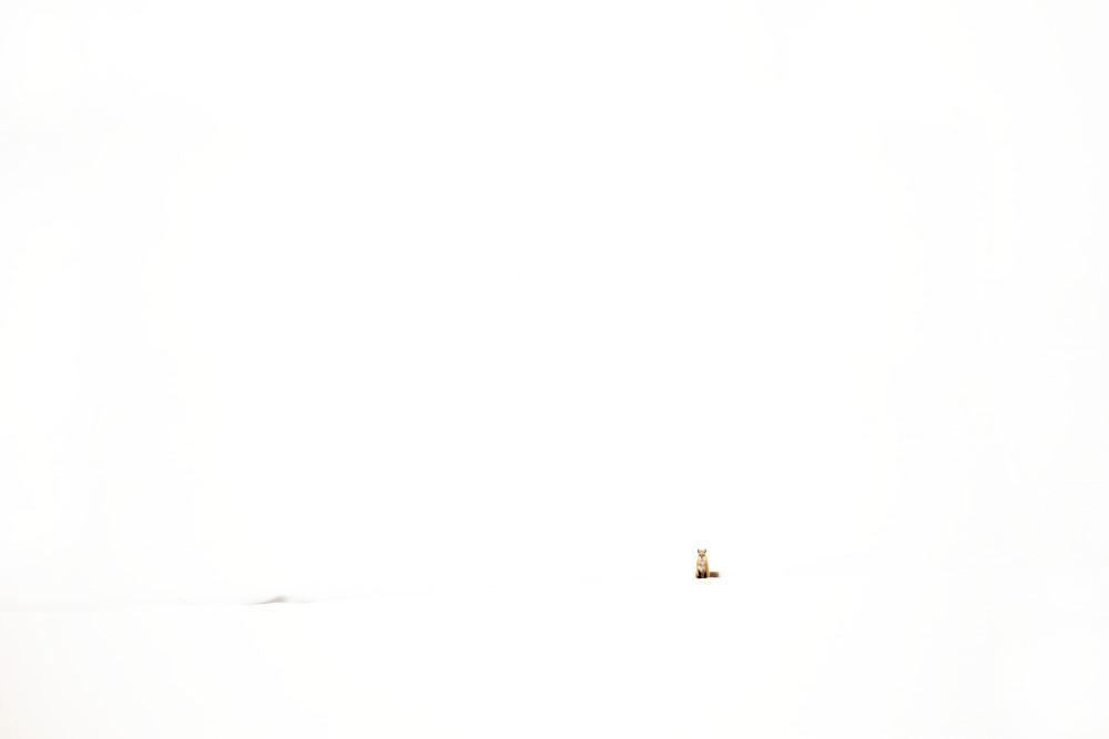 Winter Landscape | Robbie George Photography