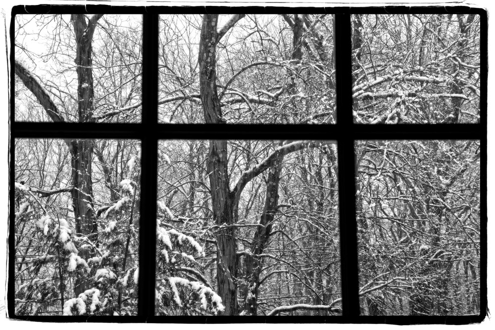 Out a snowy window