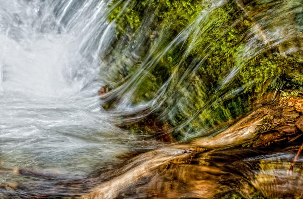 Cedar Brook Flow