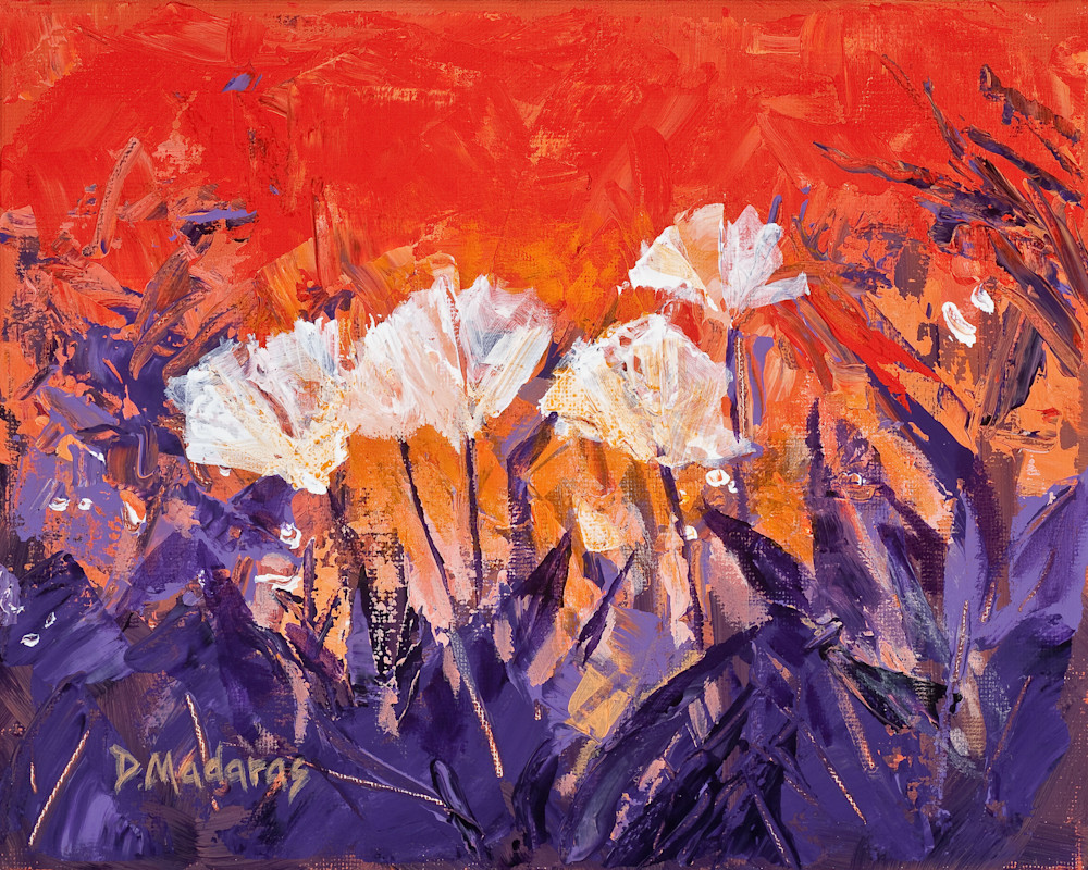 White Poppies by Diana Madaras | Floral