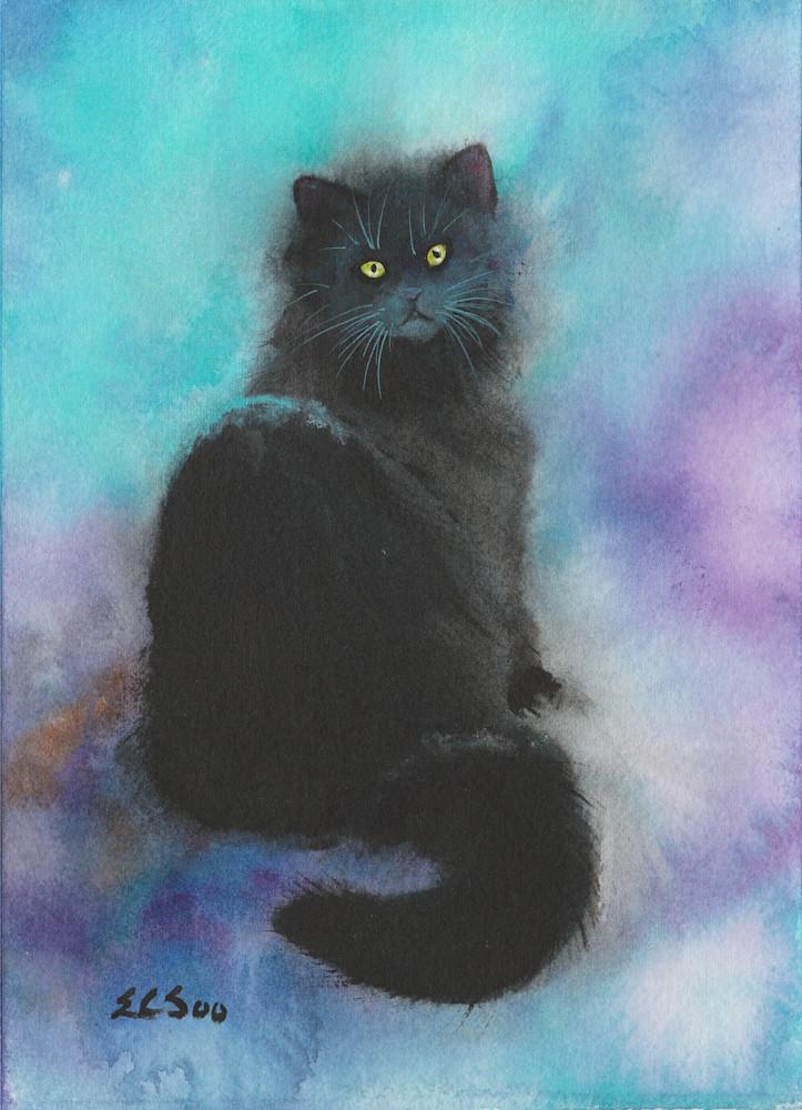 Midnight - The Black Cat