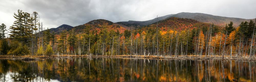 Adirondack Vista