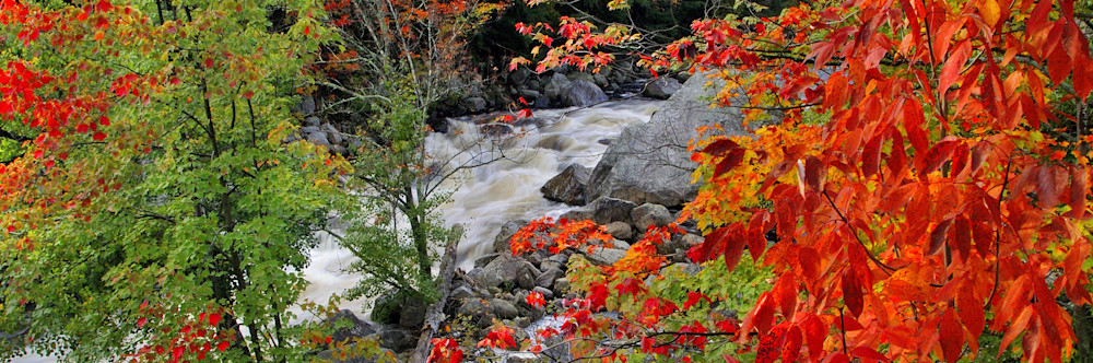 Autumn On The Ausable Art | Michael Sandy Photography