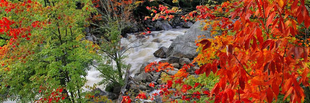 Autumn on the Ausable