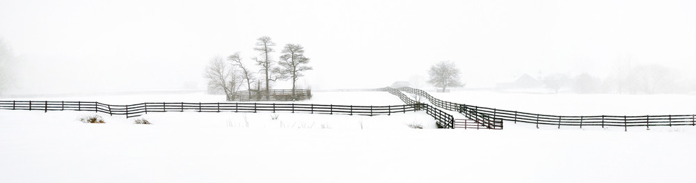 Bucks County Fences - Michael Sandy Photography