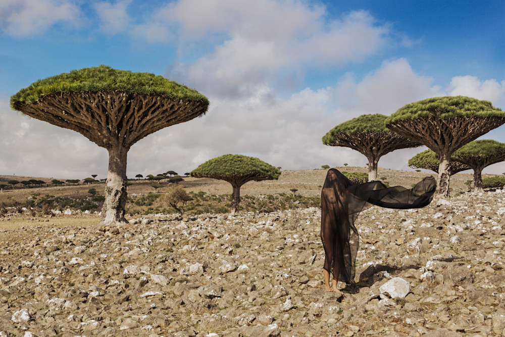 Salvation of Socotra
