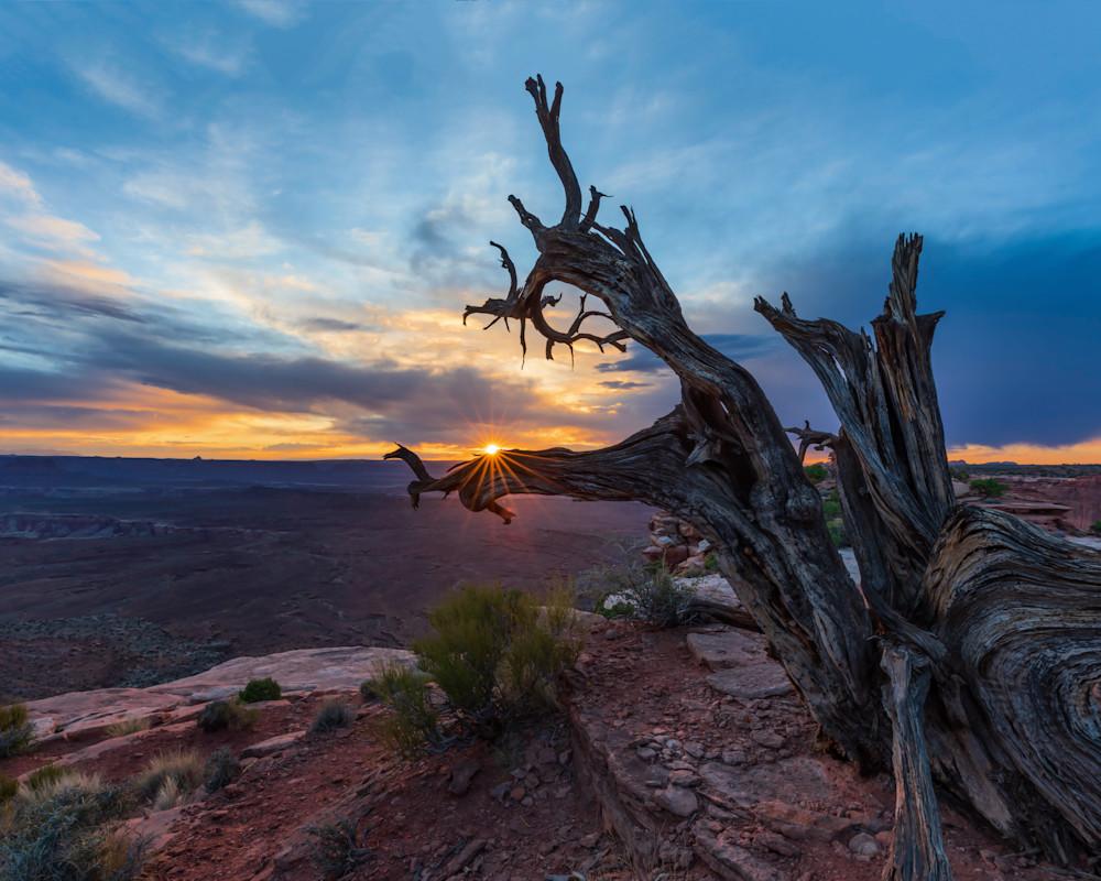 Sunstar Canyonlands
