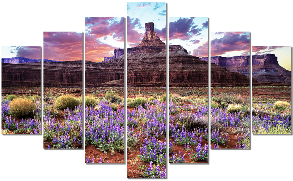Chimney and Lupines