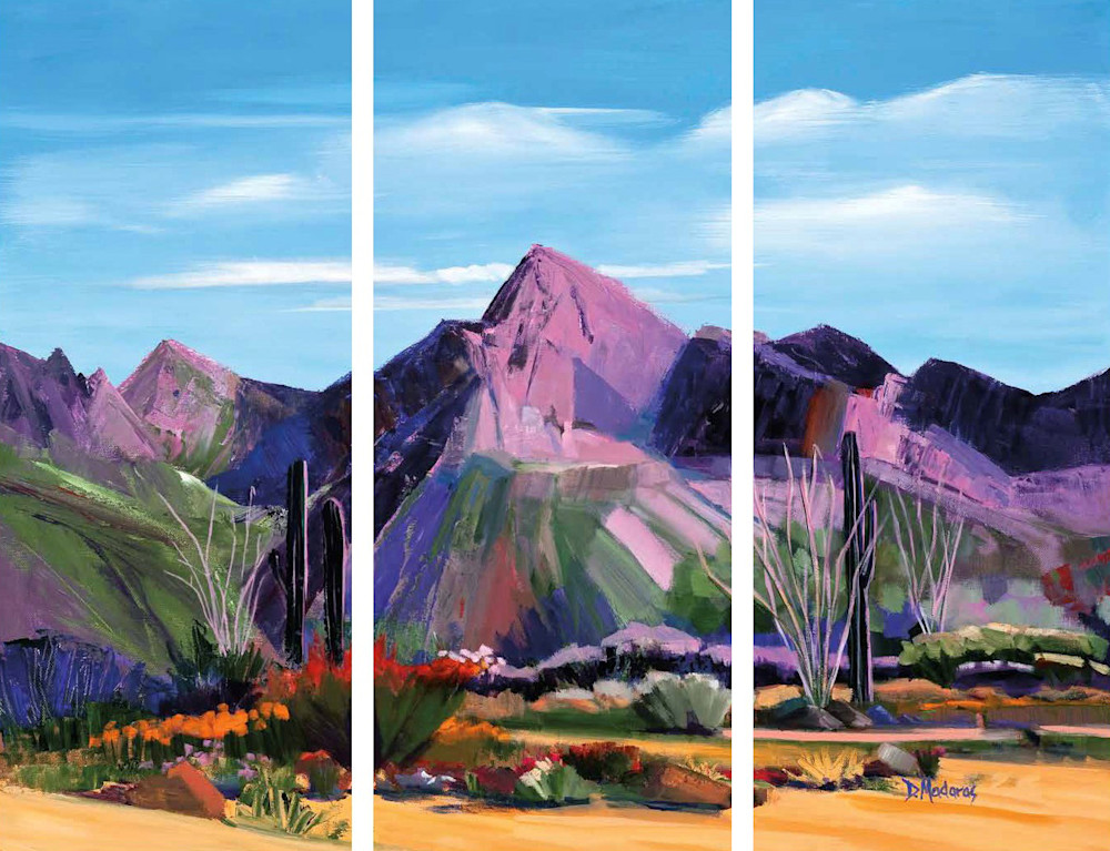 Pink Ocotillo at Pusch Ridge Triptych | Art Print