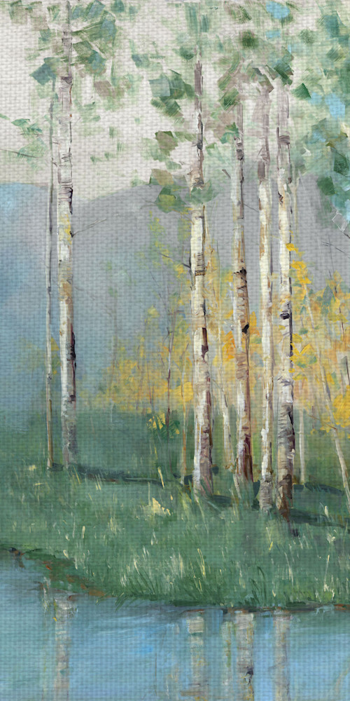 Birch Reflections IV by artist Sally Swatland Canvas Art Print