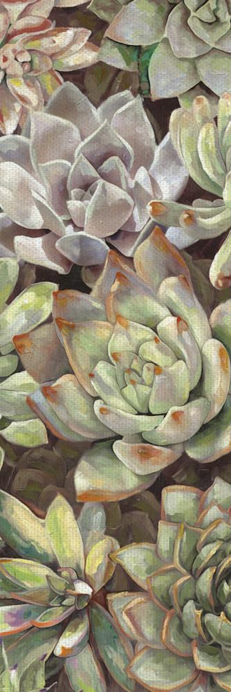 Desert Garden Panel I by artist Dixon Design Group Wrapped Canvas Painting Art Print