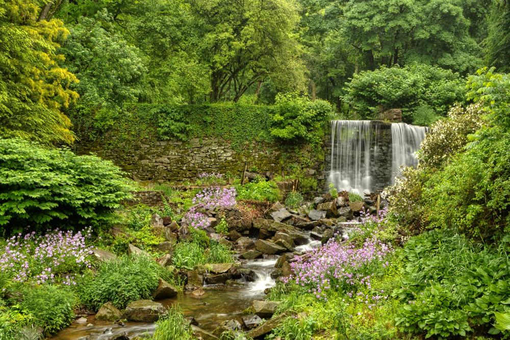 Spring on Cuttalossa Creek