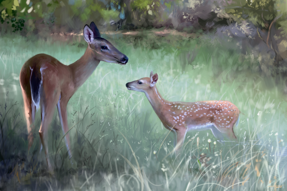 Deer Family: Fine Art Print by Hondo Branson.