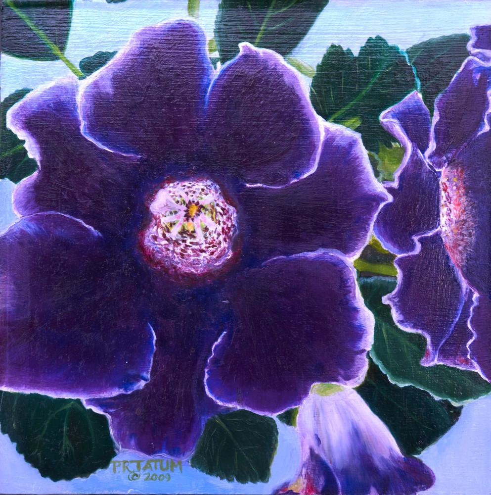 Violets-flower-up close