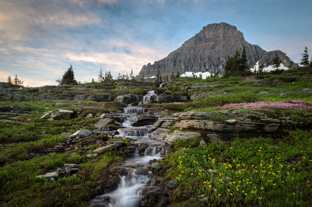 Peaceful Morning On Logan Pass Photography Art | Gingerich PhotoArt
