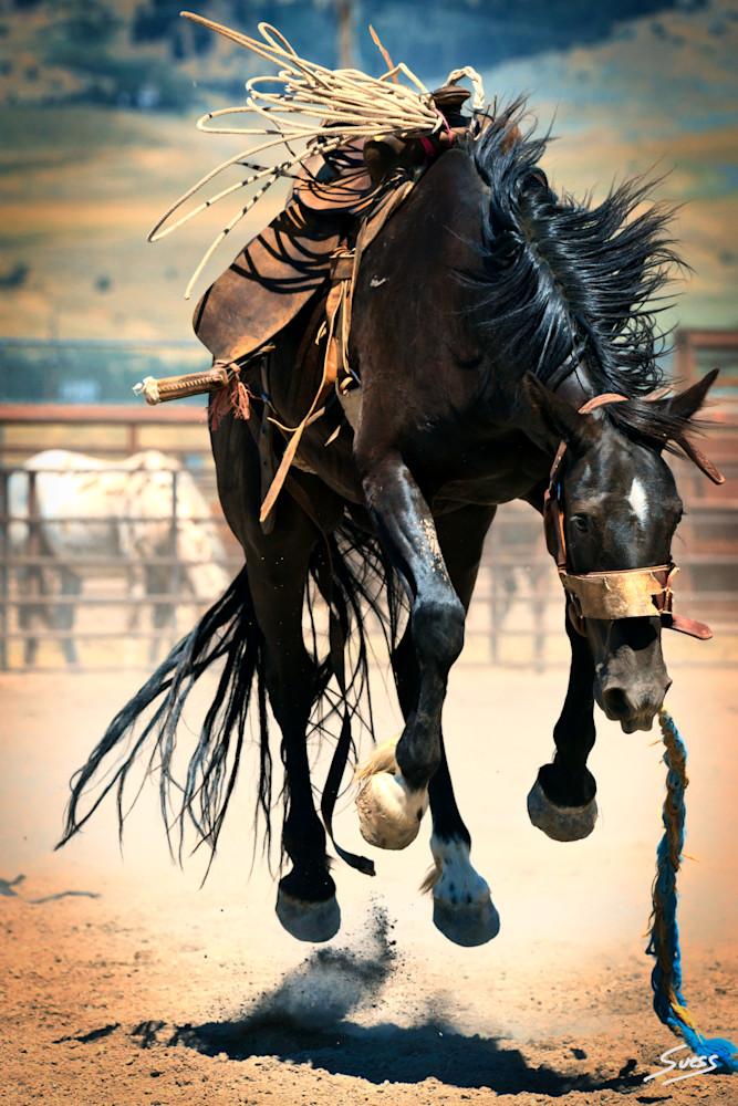 Saddle Bronc in Air - Bozeman, Montana