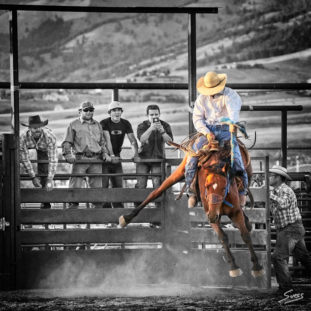 Out of the Gate - Bozeman, Montana
