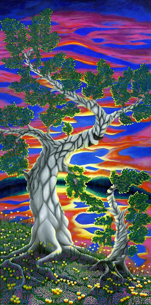 The Life Of Trees Art | Northwest Image