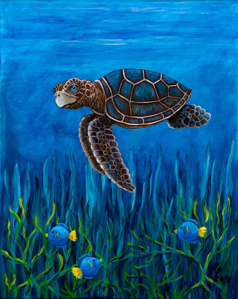 Smirking Turtle Art | Northwest Image