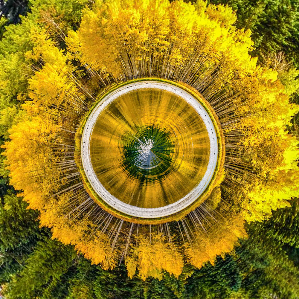 Aspens and Pines | Tiny Planet Art Photography
