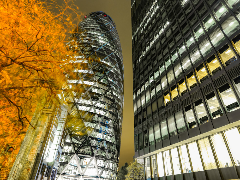 The Gherkin in Autumn   London Art Photography Store