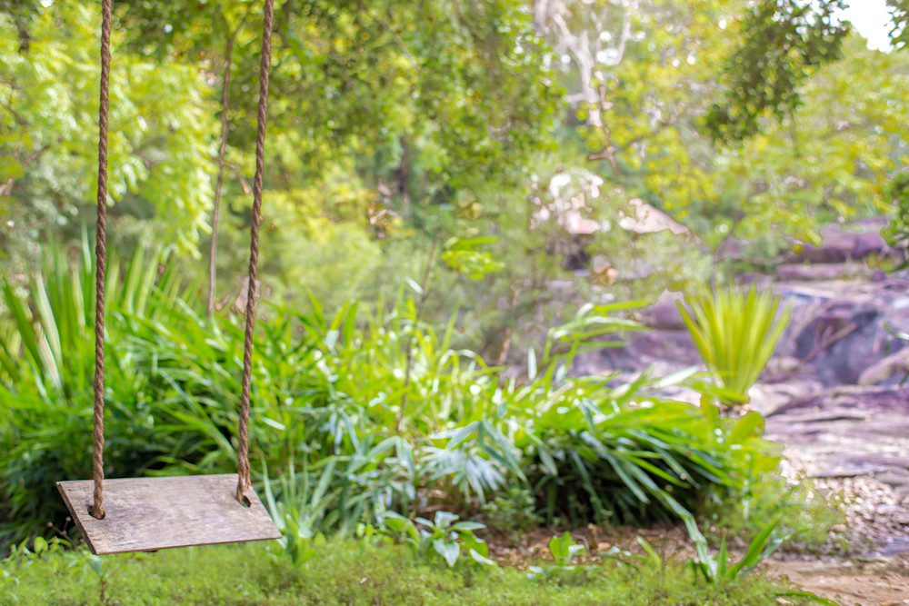 Tropical Swing   Tropical Landscape Photography Print