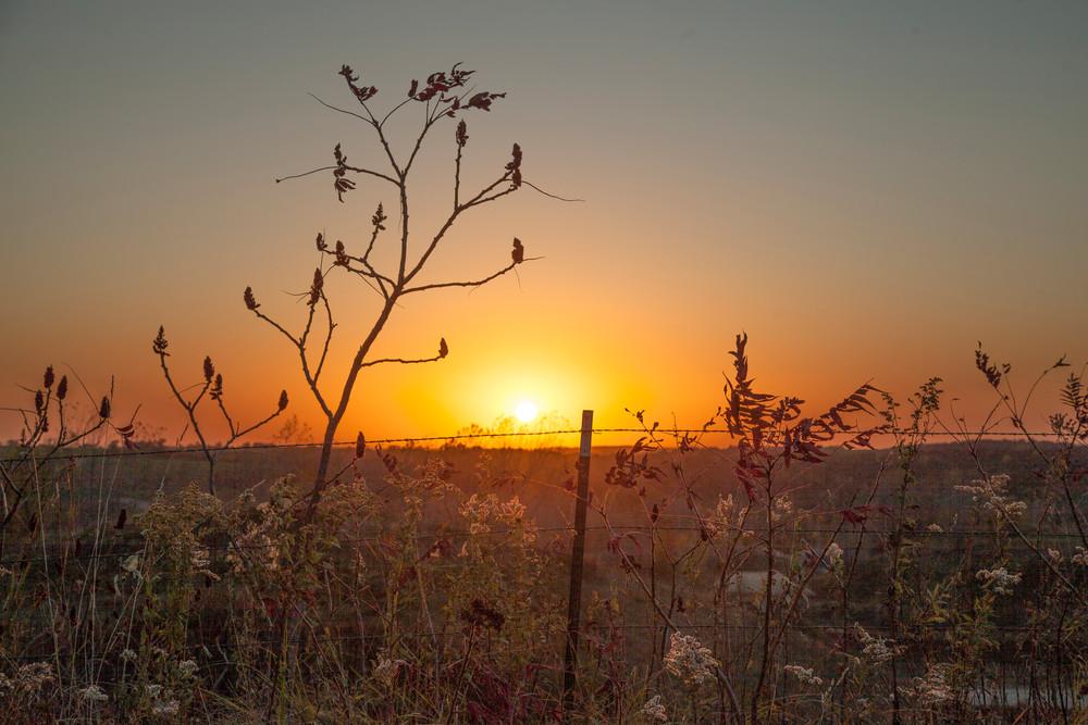 Wire Fence Sunset Photography Art | Dale Yakaites Photography