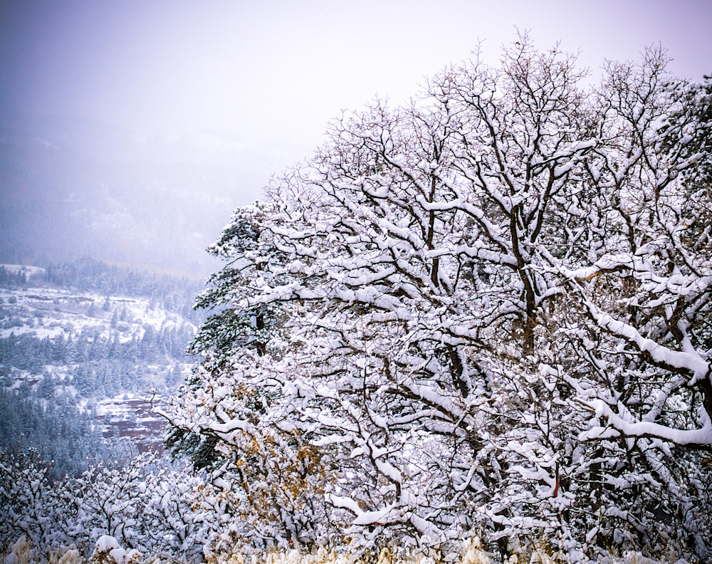 Snow In Ouray II | Mountain Landscape Photography Print
