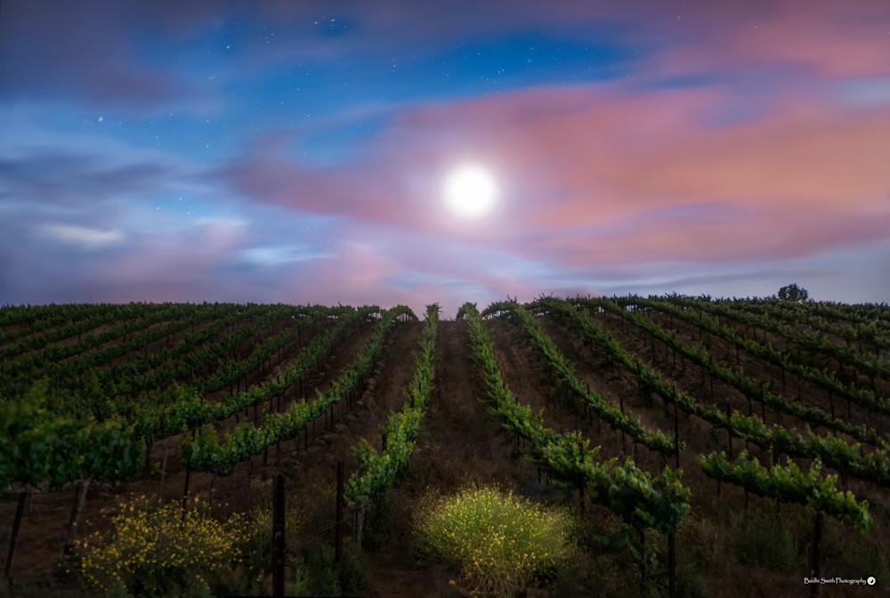 Moon, Stars and Grapes